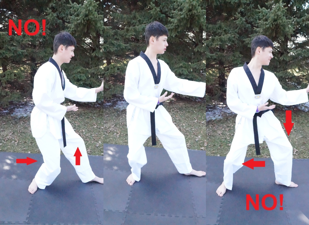 back stance knee injuries