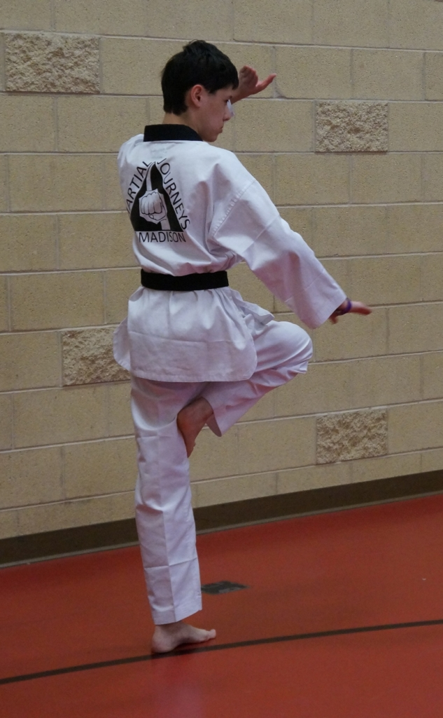 form, training, practice, black belt, student, learn